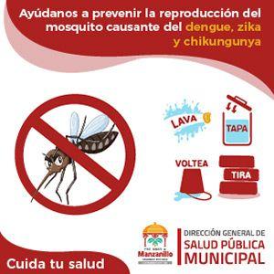 Ayúdanos a prevenir la reproducción del mosquito causante del dengue, zika y chikungunya
